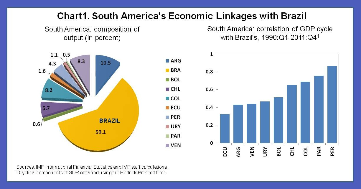 an introduction to the history of brazils economy Essay on brazil brazil is the largest  which includes the introduction of a new currency, the real,  limits to integration with the world economy,.